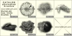 Цветочки - превью кисти фотошоп