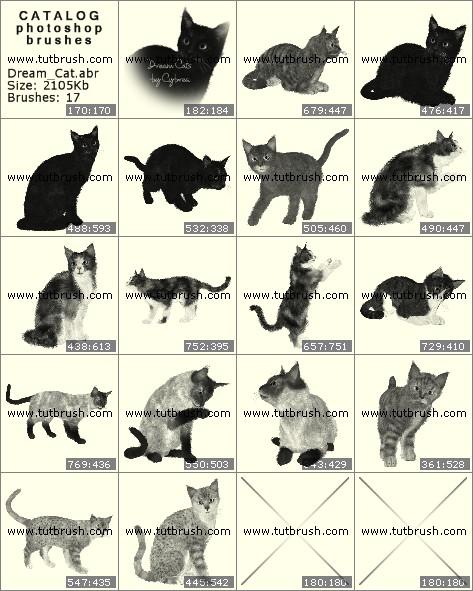 Кисти для фотошопа Кот