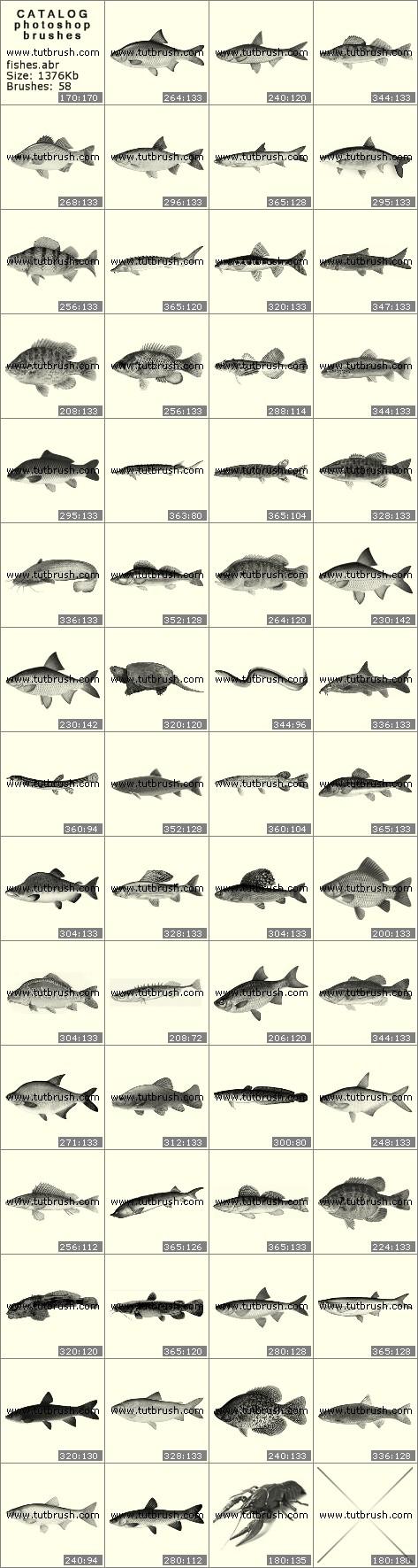 Кисти для фотошопа Рыбки