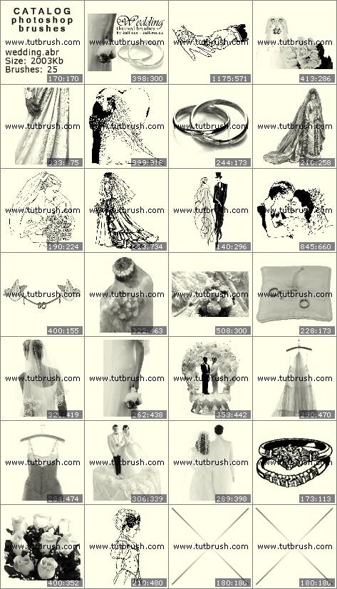 Photoshop brushes Wedding Accessories