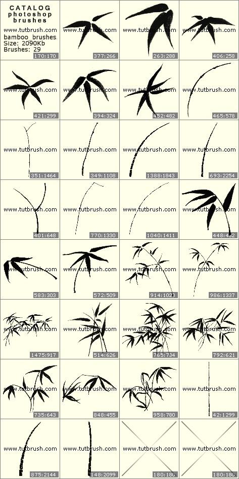 Photoshop brushes Bamboo