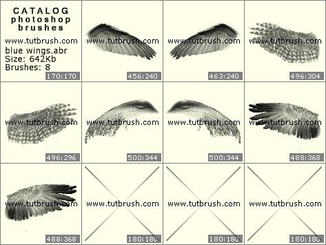 Кисти для фотошопа Лазурное крылья