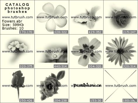 Кисти для фотошопа цветочки