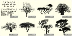 Savanna trees - photoshop brush preview
