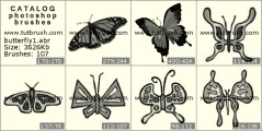 butterfly collection - photoshop brush preview