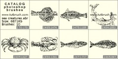 sea creatures - photoshop brush preview