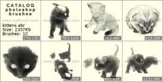 котенок - превью кисти фотошоп