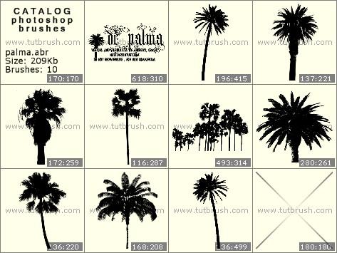 Photoshop brushes coconut tree