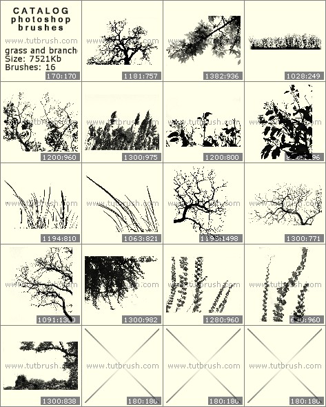 Photoshop brushes grass and twigs
