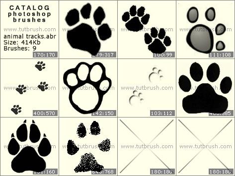 Photoshop brushes Animal Tracks