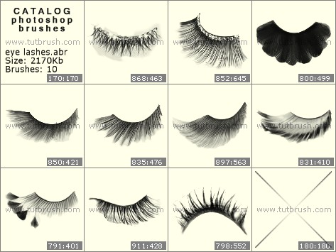 Photoshop brushes Luxury eyelashes