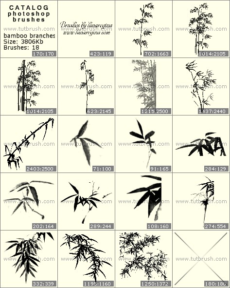Photoshop brushes Bamboo branches