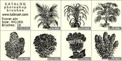 Живые цветы - превью кисти фотошоп
