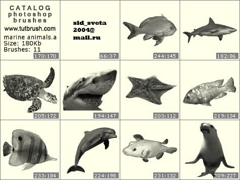 Кисти для фотошопа Морские животные