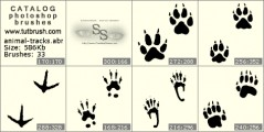 Animal Footprints - photoshop brush preview