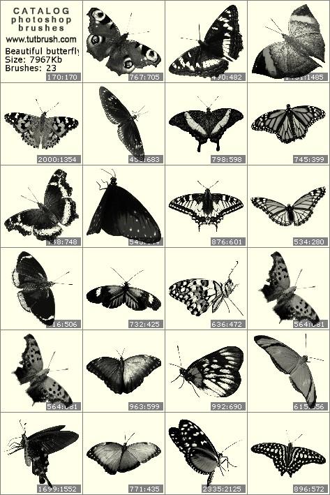 Кисти для фотошопа Прекрасные бабочки
