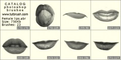Women`s lips - photoshop brush preview