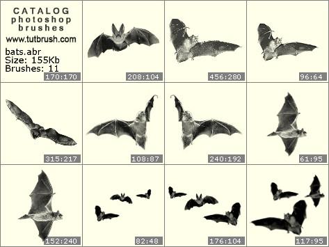 Кисти для фотошопа Летучая мышь