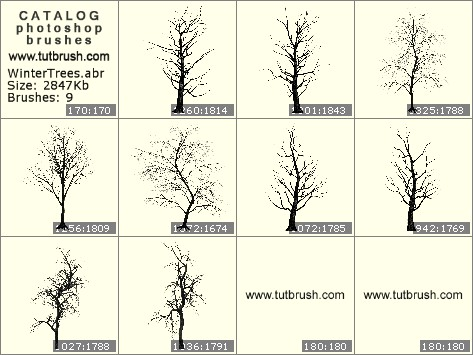 Photoshop brushes Winter trees