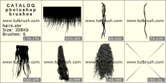 Womanish hairs - photoshop brush preview