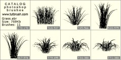 The Bush grass - photoshop brush preview