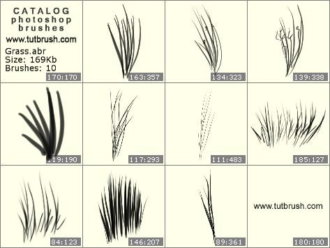 Кисти для фотошопа трава