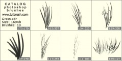 grass - photoshop brush preview