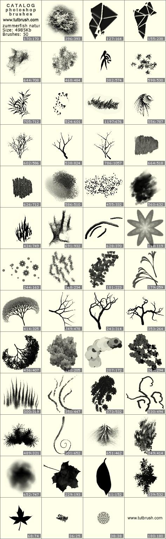 Кисти для фотошопа природа