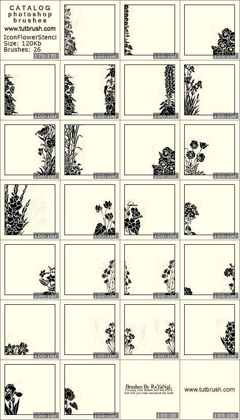 Photoshop brushes Icon Flower Stencils