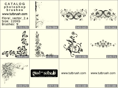 Photoshop brushes floral vector 2