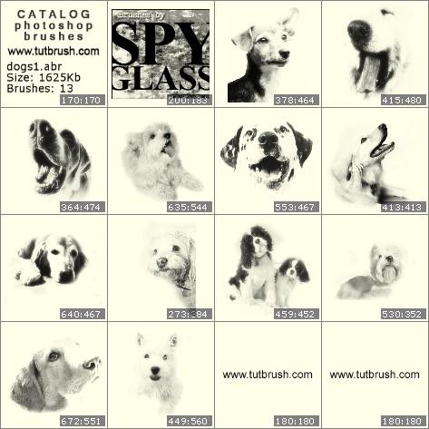 Кисти для фотошопа сторожевая собака