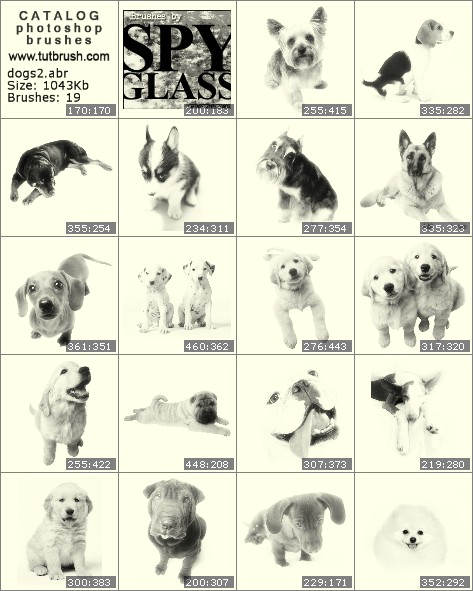 Photoshop brushes puppies