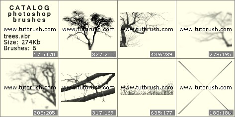 Photoshop brushes A tree is without leaves