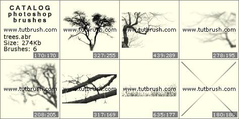 Кисти для фотошопа Дерево без листьев