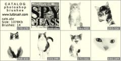 котенок и кошка - превью кисти фотошоп