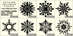 snowflake petal - photoshop brush preview