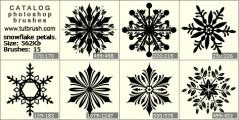 snowflake petal