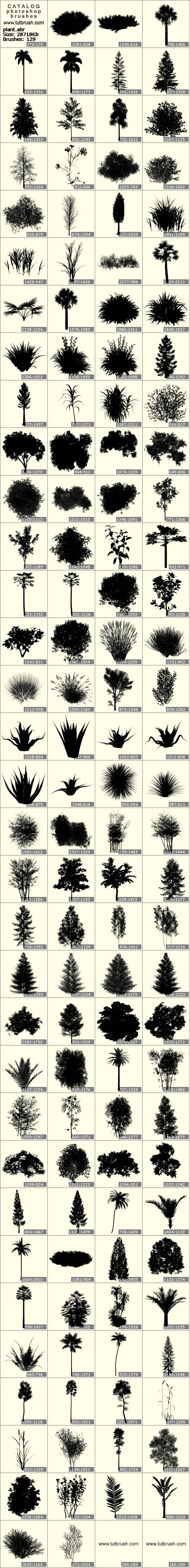 Photoshop brushes shrub