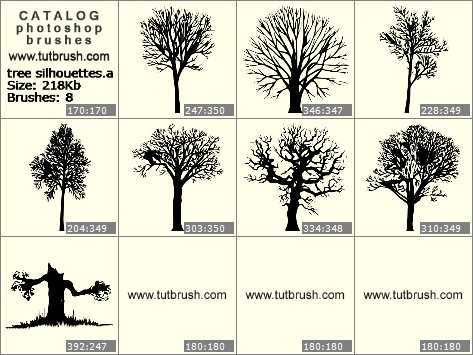 Photoshop brushes trees silhouettes