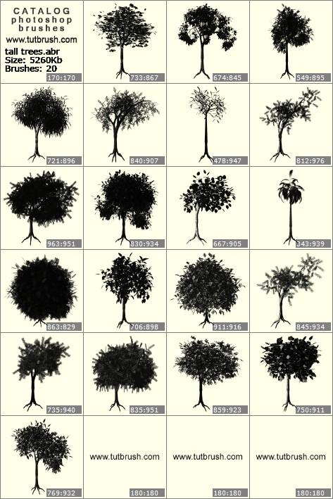 Кисти для фотошопа невысокие деревья