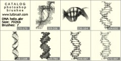 DNA helix - photoshop brush preview