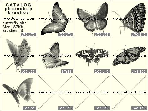 Кисти фотошоп красивые бабочки