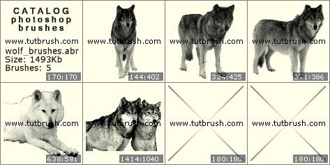 Кисти фотошоп Волк