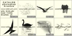 Изображения птиц