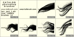 Пасма волосся