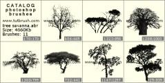 деревья Саванны