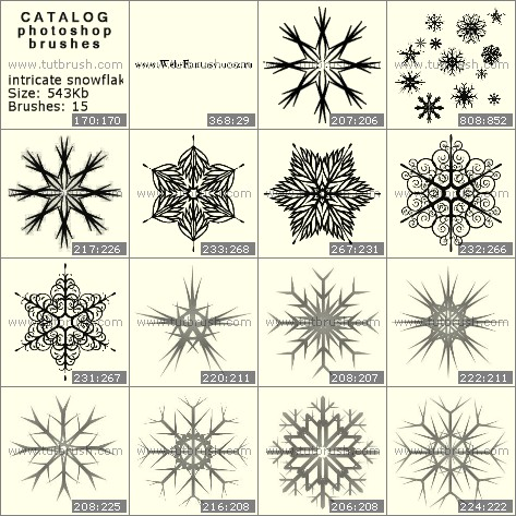 Photoshop brushes intricate snowflakes