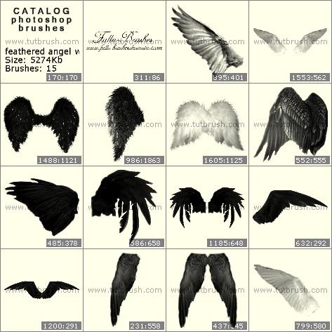 Photoshop brushes Feathered wings