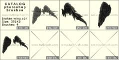 Зламані крила