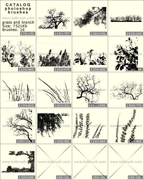 Кисти фотошоп трава и веточки